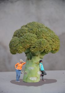 A la sombra del brocoli